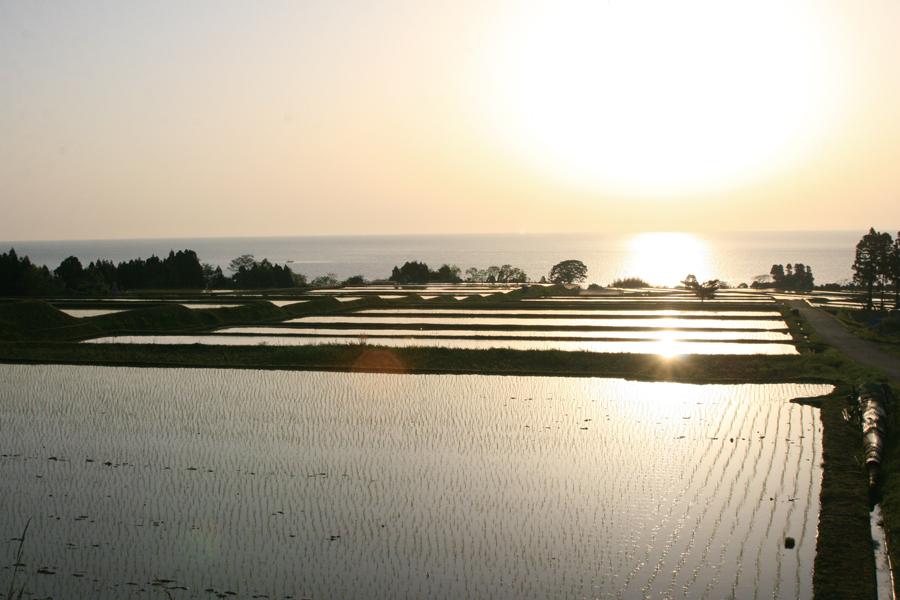 「世界農業遺産」の豊かな自然